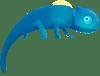 ChameleonDR Logo Icon