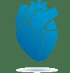 NovaCardio Logo Icon